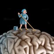 Clean Your Brain